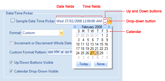 Date/Time Picker control and its elements